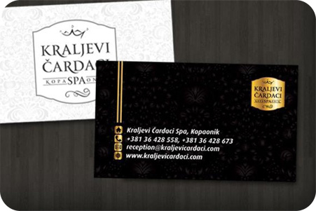 Bussiness Card 1